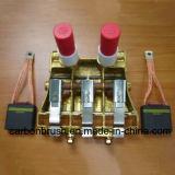 Professionele Fabrikant van Het aantal van het Deel van de Koolborstel T900 125C14784P01 voor de Motor van gelijkstroom