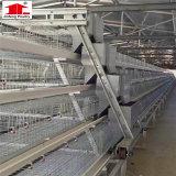 De de goedkope Kooien van de Vogel/Kooi van de Kippenren van het Fokken van de Kip/het Gelaste Netwerk van de Draad van de Kooi van de Kip voor Verkoop