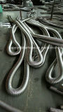 Tubo flessibile del metallo flessibile della treccia del collegare dell'acciaio inossidabile e del tubo ondulato