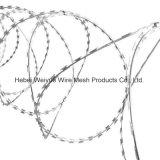 Collegare a fisarmonica del rasoio del filo di obbligazione galvanizzato alta qualità