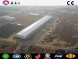China barata de acero prefabricada de la luz de almacén para venta