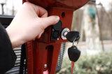 페이지 관제사에 의하여 무능하게 하는 전기 기동성 스쿠터