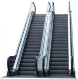 Somme-Ascenseur résistant commercial extérieur d'intérieur d'escalator de Vvvf