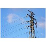 40m, 50m, 60m, 70m de Communicatie van de Toren van het Rooster van de Mast van de Antenne Toren van Pool