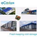 Armazém e fábrica de processamento frios de mantimento frescos personalizados grande tamanho do Refrigeration para vegetais e frutas
