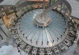 De automatische Volledige Lijn van de Vullende Machine van het Mineraalwater Bottelende