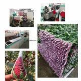 多彩な浸る花の手袋のPEのKnotless純作成機械