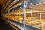 Huis van /Chicken van het Huis van de Vogel van de Structuur van het staal het Prefab (kxd-PCH2)