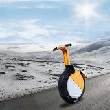 Roda grande Monocycle elétrico de 17 polegadas a uma produziu por Fábrica