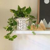Lavable Papel Kraft la maceta para unas vacaciones decoración jardín de flores hechas a mano sembradora Pot