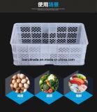 Cestino di plastica personalizzato di memoria, cestino di verdure di plastica, cestino di plastica dei pesci