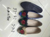 Manier Dame Flat Shoes, de Vlakke Toevallige Schoenen van Vrouwen, de Schoenen van de Reis, de Vrouwen van de Manier/Dame Shoes