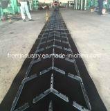 Chevron-Förderband verwendet auf Förderanlagen-System