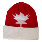 カナダのロゴNtb16bの編まれた帽子を暖めなさい