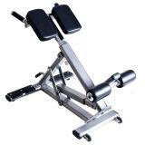 Iper estensione/estensione strumentazione Bench/Ab Bench/Gym di forma fisica iper