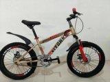 """"""" Fahrrad MTB, Kind-Gebirgsfahrrad, Kind-Fahrrad des Berg20"""