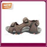 Form-Strand-Sandelholz-Schuhe mit Qualität