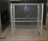 Grandi fossa di scolo del cane di collegamento Chain di 6ftx10FT/gabbia esterne resistenti del cane