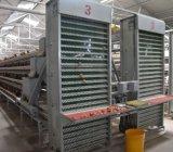 Птицы фермы автоматическая цыпленок слоя каркаса тесной клетке для слоя Pullet турецкий