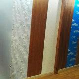 Panneaux de mur intérieurs des tailles normales WPC de matériaux de construction