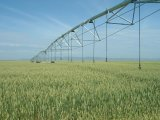 Gut-Verteilung automatisches Mittelgelenk-Bewässerungssystem für die Landwirtschaft