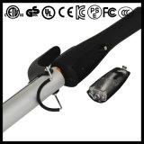 foschia 450f che designa il ferro di arricciatura del vapore del bastone (A129)