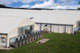 Fast construire les bâtiments agricoles de poulet avec de la volaille de l'équipement