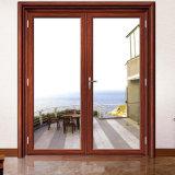 Portes d'entrée en verre de double oscillation extérieure moderne avec le bâti en aluminium