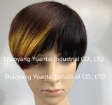 Peluca sintetizada procesada/teñida del pelo del cortocircuito mezclado del color para la sensación del pelo humano de la mujer