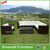 Poli mobilia dell'alluminio & del rattan, sofà esterno del rattan
