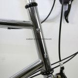 高品質Shimano Claris 20インチの小型Veloのバイク(小型VELO3)
