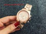 女性Fs424のための素晴らしい普及した水晶腕時計