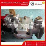 La pompa del motore diesel di Cummins parte la pompa 3655644 3034874 di iniezione di carburante