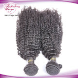cabelo 100% peruano do Virgin natural da cor 8A que tece Curly Kinky