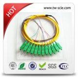 Splitter 24c PLC FTTH Gpon/Epon или коробка ABS волокна 48c Gpon/Epon оптически