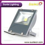플러드 빛 LED (SLFP13 30W) 이상으로 안전이 30W 반점에 의하여 점화한다