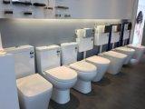 Het geruisloze Moderne Badkamers Ingebedde Reservoir van het Toilet met het Certificaat van het Watermerk