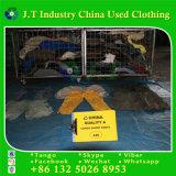Используемые одежды в кальсонах груза Bales коротких