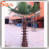 Aménagement paysager Décoration Artificielle Fake Fan Palm Tree
