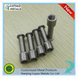 Roestvrij staal CNC Machinaal bewerken/Staal Machining/CNC die Deel machinaal bewerken