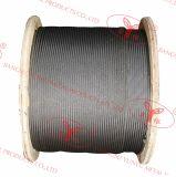 선형 접촉에 의하여 놓이는 철강선 밧줄 - 6X19s, 6X19W