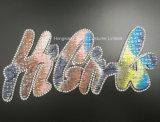 Scambio di calore di vetro del Sequin della zona del Rhinestone del tessuto di Hotfix di motivo del Rhinestone (St-Higirl)