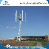 générateur de turbine triphasé vertical de vent à C.A. 100W petit pour le bateau