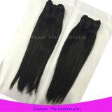 100% Malaysian-Jungfrau-Haar gerades Tanglefree Qualitäts-Haar