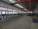 CNC van de Houtbewerking van de hoge Precisie de Automatische Machine van Tenoner van het dubbel-Eind