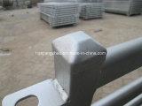 El tubo cuadrado de paneles de cabra / Paneles de ganado ovino Venta caliente (XMM-SP7).