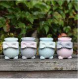 卸し売り陶磁器の小型屋内花園のプラント鍋