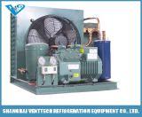 Compresseur de réfrigération du point de congélation de l'unité de condensation