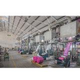 Sacs de couverture de vêtement de LDPE de la Chine