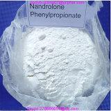 NandroloneのPhenypropionate筋肉成長の同化ステロイドホルモン否定論履積Pheny 62-90-8